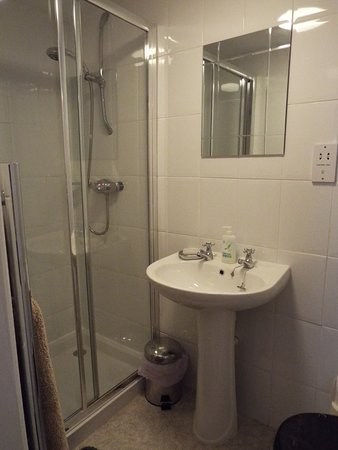 Meadowbrook Cottage B&B: Shower in the Double room.  Room has 1 window & stone replica fireplace of Brunel's Box Tunnel.