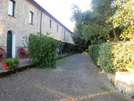 Monterotondo Marittimo, Włochy: Rooms located as you drive into the Agriturismo