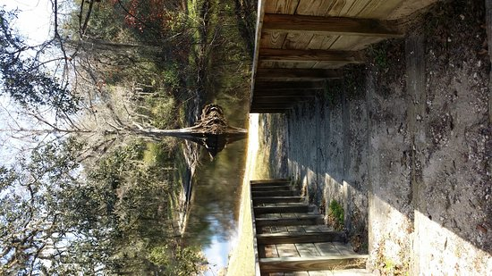 Photo of Crooked River Campground Brooksville
