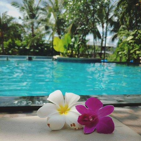 Novotel Phuket Kata Avista Resort and Spa: IMG_20170117_080007_071_large.jpg