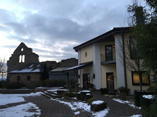 Geisenheim, Tyskland: Im Hintergrund die Burgruine