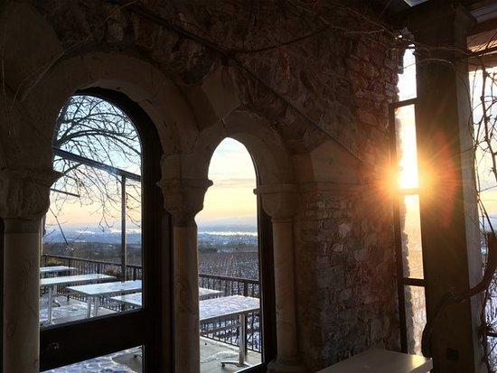 Geisenheim, Tyskland: Im Winter und Sommer schön