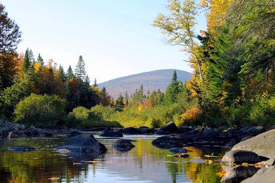 Oquossoc, ME: Rapid River