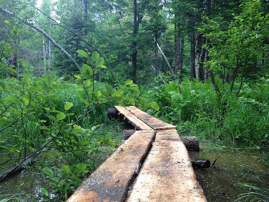 Oquossoc, ME: Bog Bridging on RLHT Trail