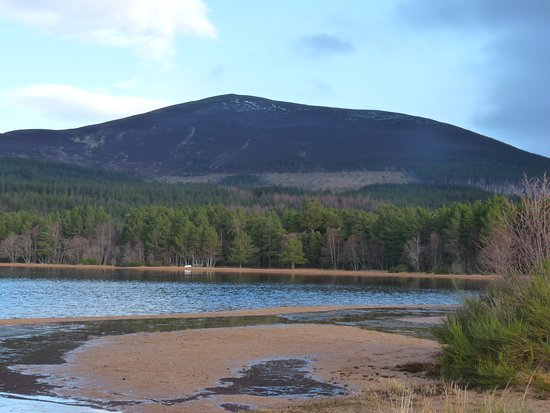 Aviemore, UK: Part of the scene from the beach