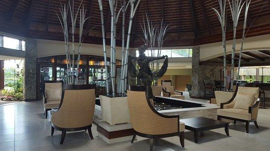 Mount Irvine, โตเบโก: 20170205_120642_large.jpg