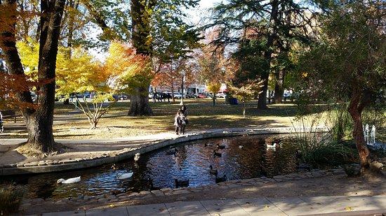 Sonoma Plaza Park