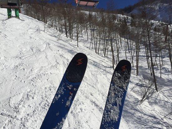 Hakuba Central Snowsports