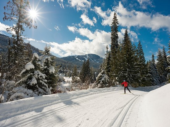 Cross Country Skiing in Whistler Photo by Mike Crane