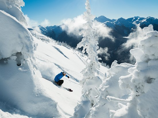 Deep Powder Skiing in Whistler Photo by Mike Crane