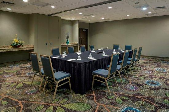 Holiday Inn Ann Arbor / University of Michigan: Conference Room