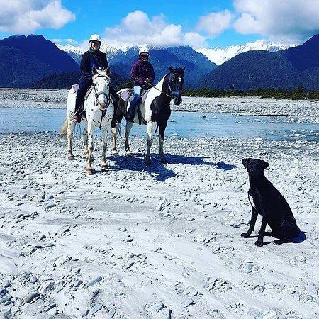 Glacier Country Horses