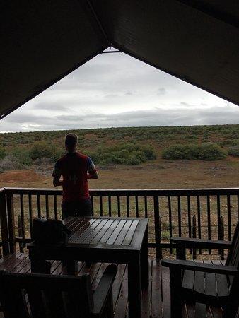 Addo Rest Camp: View of deck in safari tent 3