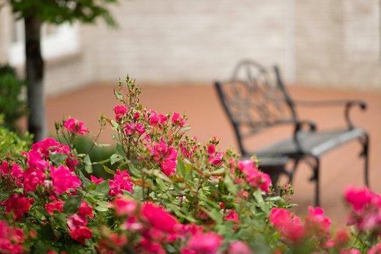 Hilton Frontenac Outdoor Area