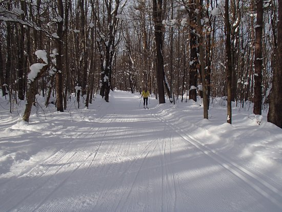 Wattsburg, Pensylwania: Well groomed trails for skating or traditional makes the skiing a pleasant experience for all!