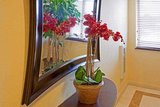 Holiday Inn Express Queens - Maspeth: Elevator Lobby