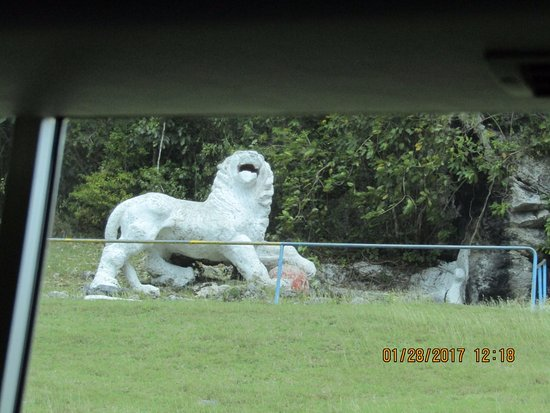 Saint George Parish, Barbados: Taken from the tour bus. A Signal Station soldier carved this lion out of coral stone in 1818