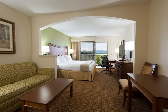 Holiday Inn Express Asheville: King Studio Suite W/Pullout Sofa Great For Families W/ Small Kids