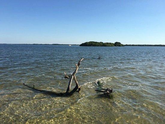 Hayley's Jet Ski and Boat Rental: Island view