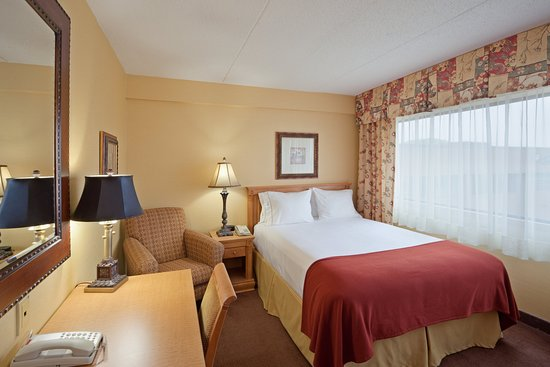 Holiday Inn Express & Suites - Saint John : Enjoy Free WiFi and Breakfast In Our Single Queen Room