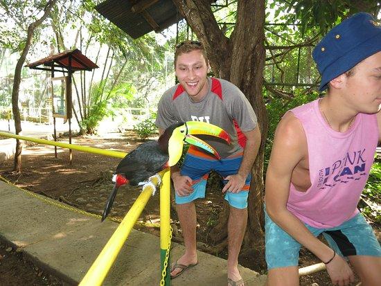 Canas, Costa Rica: making friends