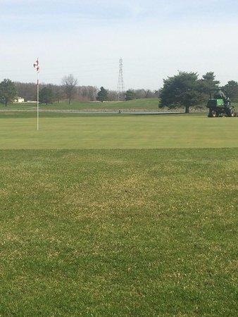 Springbrook Golf Club: Hole 14
