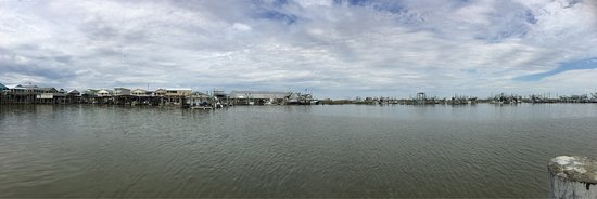 Venice, LA: photo1.jpg