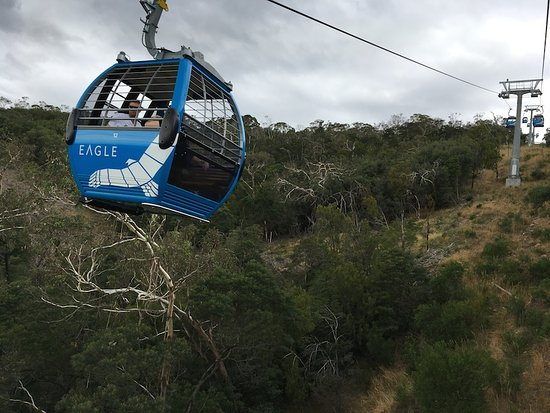 Arthurs Seat, Австралия: passing gondolas going the other way