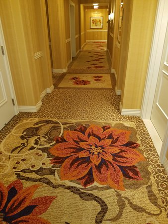 Waldorf Astoria Orlando: My Wife Loved The Color Scheme And Carpeting