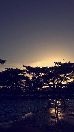 海濱戴斯飯店照片