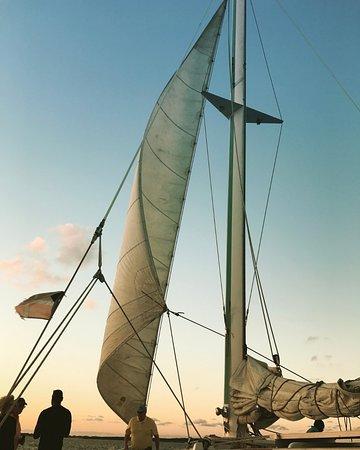 Seahorse Sailing Adventures