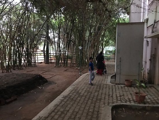 SATHYA Park and Resorts: photo1.jpg