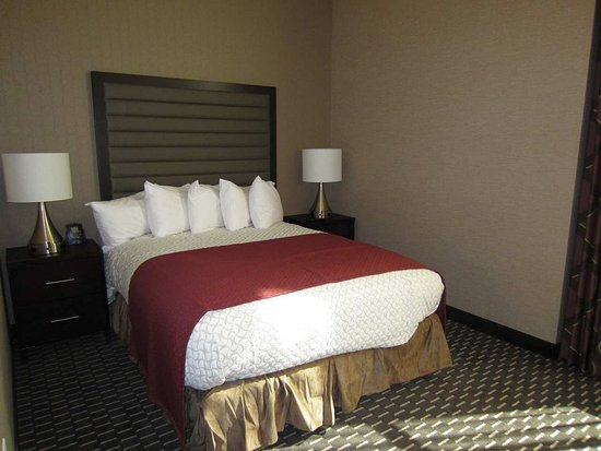 Embassy Suites by Hilton St. Louis - Downtown: One Queen Bed
