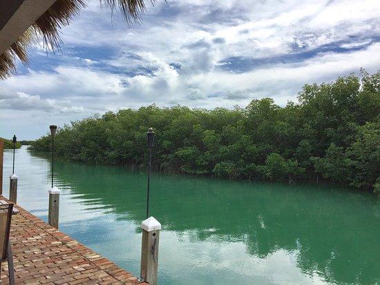 Key West Eco Tours: photo3.jpg