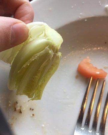 North Bay, Canada: big chunks of lettuce in the greek salad