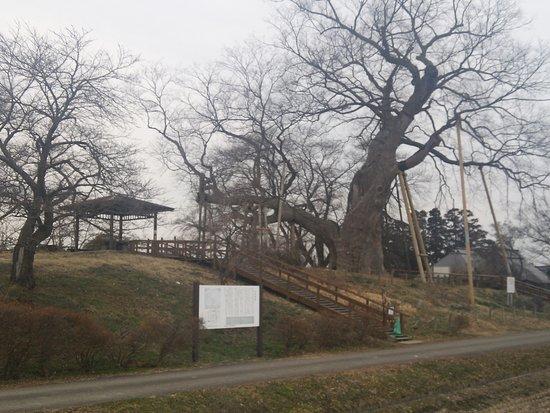 Kozashi Castle Ruins