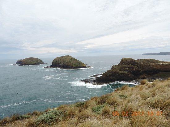 Smithton, Avustralya: Cape Grim