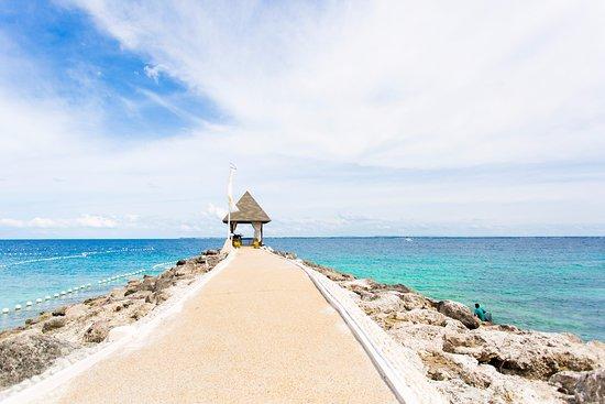The 10 Best Cebu Island Beach Hotels Of