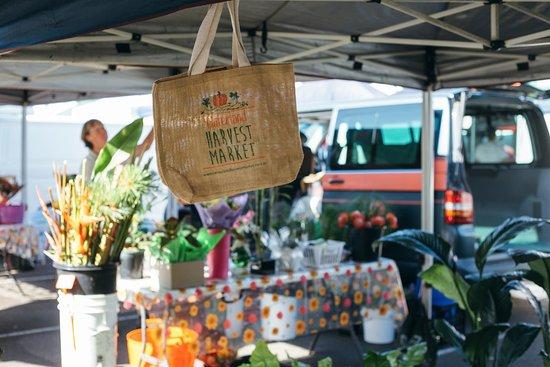 Hinterland Harvest Market 6-11am Saturdays, Woombye!