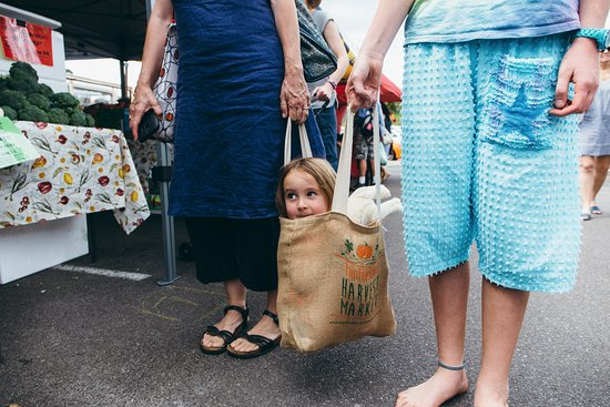 Woombye, Australia: Hinterland Harvest Market shopping bags - reusable and sturdy!