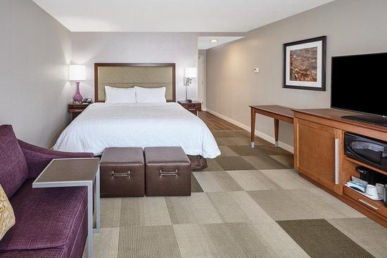 Hampton Inn Fond Du Lac  - King Sofa Bed