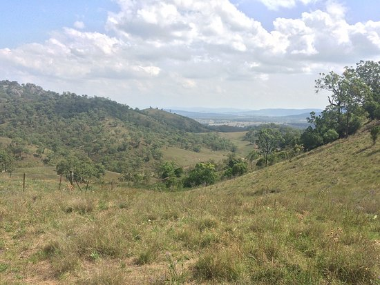 Wingen, Australia: Just a few shots of the scenery to expect @ Burning Mountain Reserve