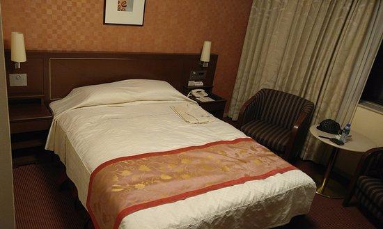 솔라리아 니시테츠 호텔