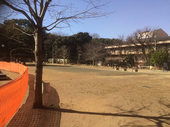 Shirokanedai Donguri Children's Park