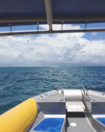 Cape Tribulation, Australia: Heading towards Mackay Reef.