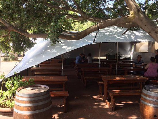 The Hollow Tree New Tented Area & New Tented Area - Picture of The Hollow Tree Bellville - TripAdvisor