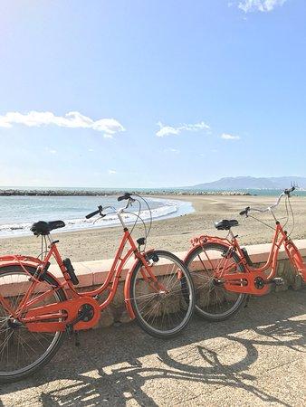 Bike Tours Malaga We Bike Malaga: photo0.jpg