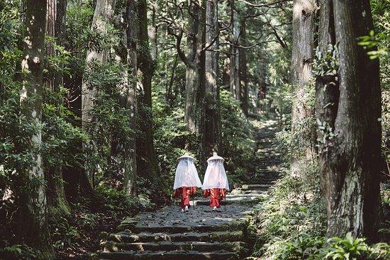 Japan: Daimonzaka (Wakayama)