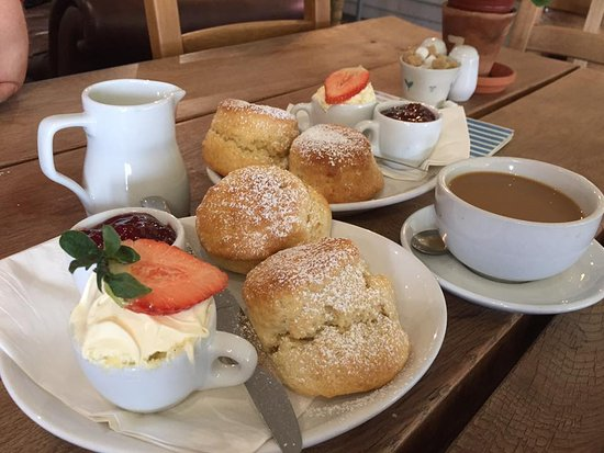 Boscastle, UK: Cream tea and coffee for two