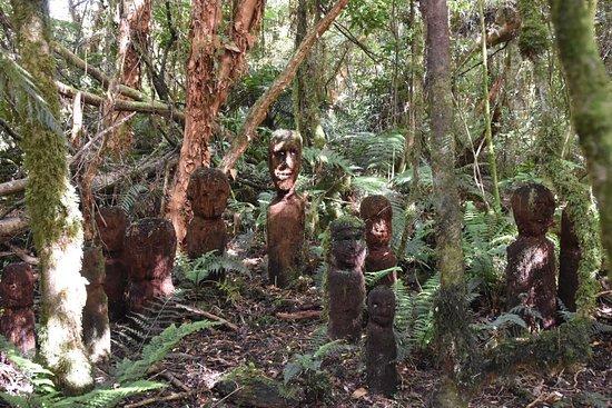 Catlins Mohua Park: photo3.jpg